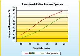 Trasemina SOS
