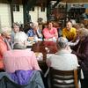 The Netherlands: Trip to Biesbosch and Werkendam with Zonnebloem Oosterhout