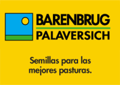 BARENBRUG PALAVERSHIC NEW!