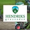 UEFA zeer tevreden over Hendriks graszoden en RPR