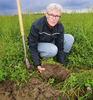 Fosfaat beter beschikbaar met gras klaver