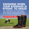 Ryegrass Promotion