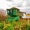 ILP: sistemas integrados e a biodiversidade aliada à produção agropecuária