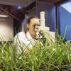 Barenbrug invests in climate-resistant grass solution technology to tackle environmental issues