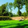 Parki, zieleń miejska - Pytania i odpowiedzi