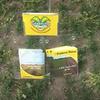 Grasgroenbemesters als vangewas na de oogst