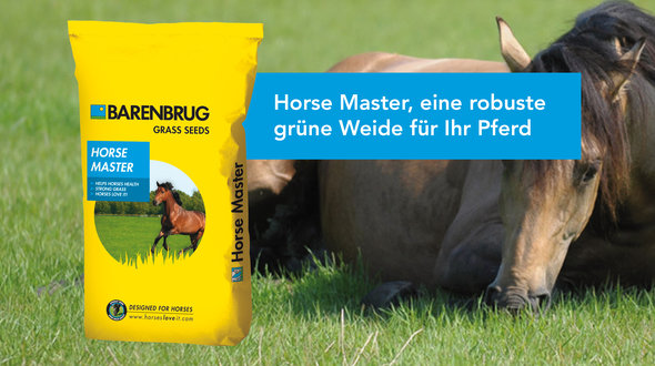 Link-item_HorseMaster_DE!