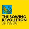 Summer Grains Sowing Revolution