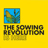 Summer Grains Sowing Revolution