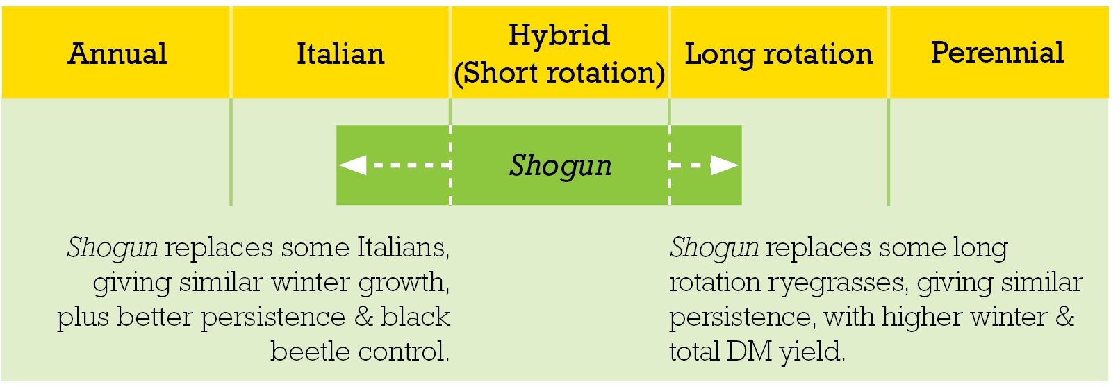 Shogun redefines ryegrass categories
