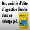 Des variétés d'élite d'agrostide blanche dans un mélange golf.