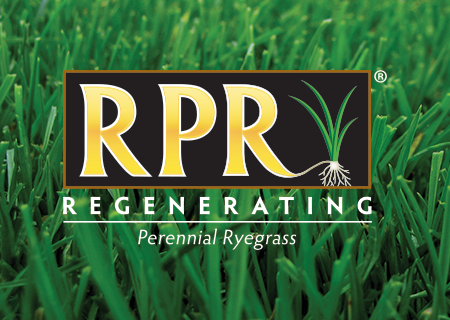 Amazing Barenbrug Usa Professional Turf Turf Technologies Rpr Home Interior And Landscaping Dextoversignezvosmurscom