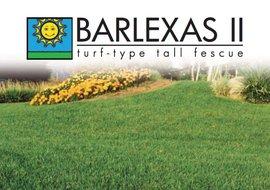 Barlexas II