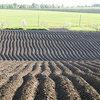 Bar Tech - February 2020 - Soil Focus