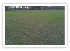 Schade grasveld na aanhoudende regen. Herstel met SOS.