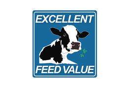 Excellent feed value luzerne