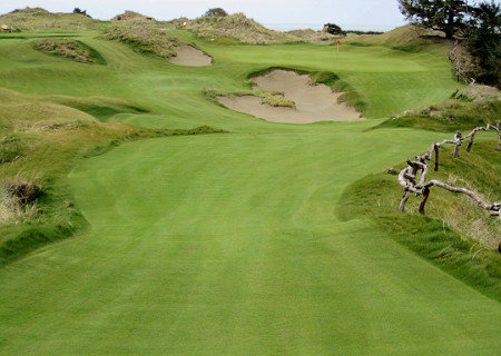 Dunes Mix and Bandon Dunes Golf Resort