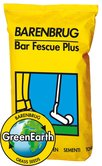 Bar Fescue Plus