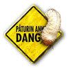 Réparez les dégâts dus aux larves de coléoptères et de tipules avec SOS