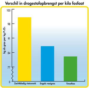 Verschil in drogestofopbrengst per kilo fosfaat