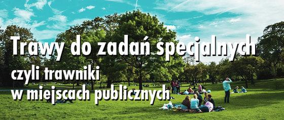 GAZONY_Newsletter_Trawy_do_zadan_specjalnych