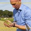 Les pertes d'amidon, le plus grand problème durant la conservation du maïs