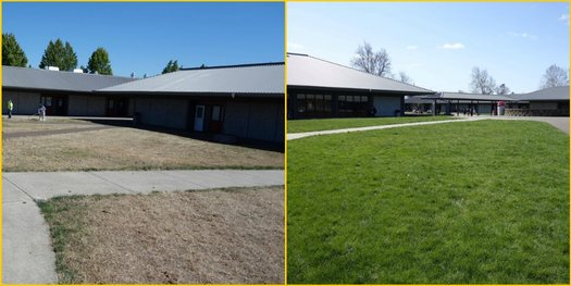Before and After of the Courtyard