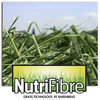 More milk and healthier cows, with NutriFibre.