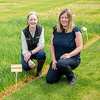 New SRUC Grass and Clover Varieties launch