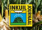 Inkuiljournaal: Late maisoogst vraagt om aandacht
