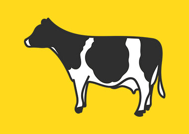 NF_healthy_cows_banner-edit!