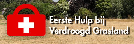 Header_EHBO_bij_verdroogd_grasland