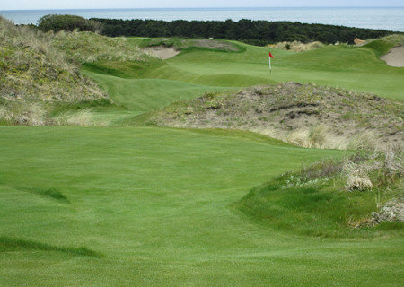 Dunes Mix at Bandon Dunes Golf Resort