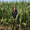 HM-114 corn from Heritage Seeds offers high yields and quality