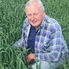 New, highest yielding forage oat to boost early grazing