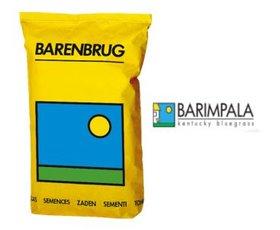 barimpala sacco 2