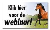 Webinar 'Gezond gras voor uw paard' gemist?
