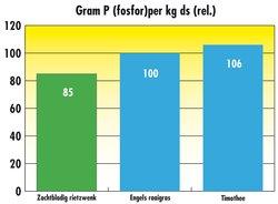 Fosfor per kg ds