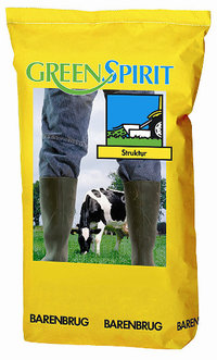 GreenSpirit Struktur