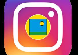 Instagram Barenbrug