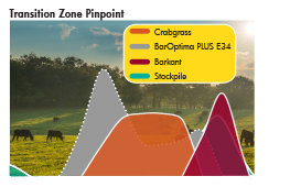 BarOptima PLUS E34 and Barkant turnips can help extend the foraging season in the transition zone.