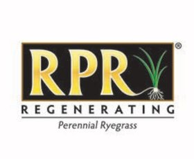 RPR website-01