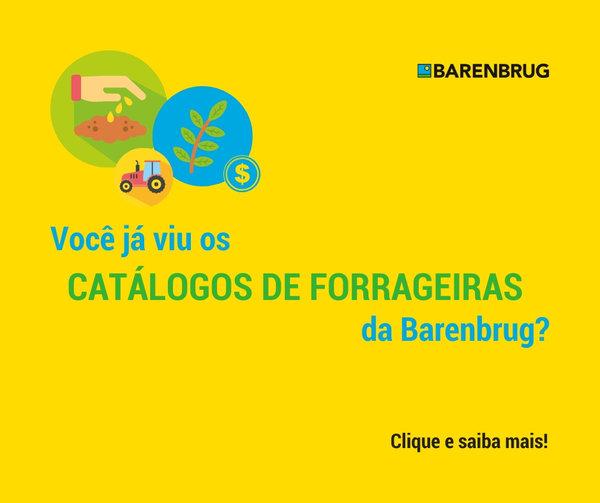 Veja as sementes da Barenbrug do Brasil