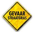 Meer weten over straatgras, klik hier!