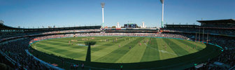 Premier establishment, colour, longevity & disease resistance at Domain Stadium
